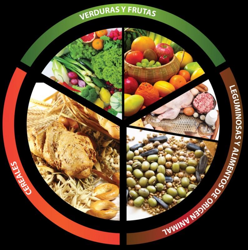 80 Plato Buen Comer 1 El Plato Del Bien Comer Es Una Representacion Grafica De Los Grupos
